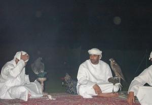 Falcons Mohr - united arab emirates